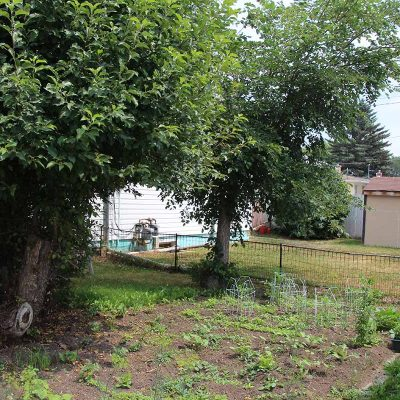 1149 - 1149-1153-Montgomery-house-rental-backyard